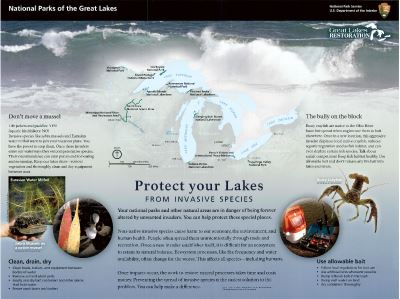 Protect Your Lakes From Invasive Species