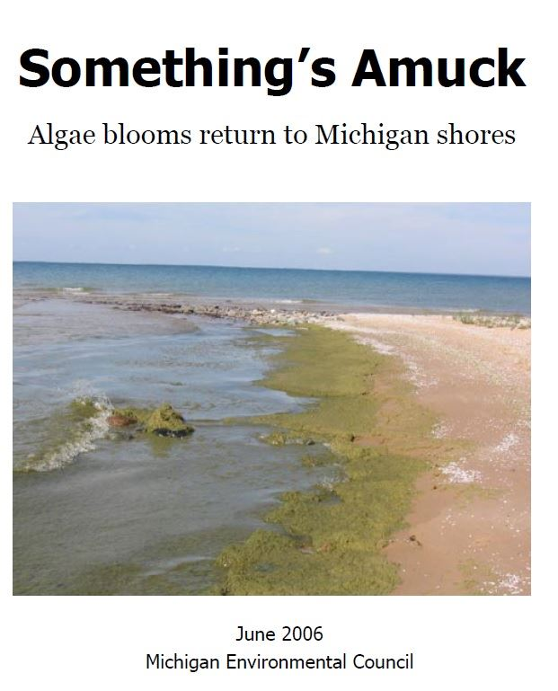 algae in lake michigan