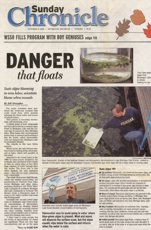 Blue Green Algae Muskegon Chronicle